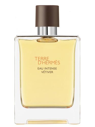 Hermes Terre D'Hermes Eau Intense Vetiver parfémová voda pro muže
